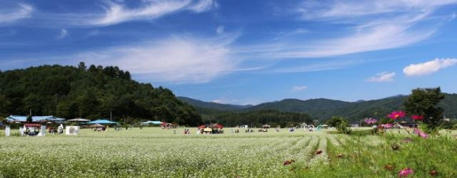 Hyo Seok Cultural Festival